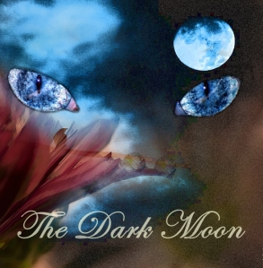 dark-moon-photo copy